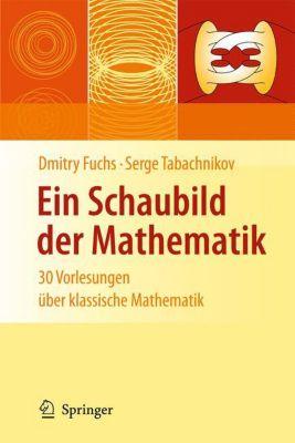 Ein Schaubild der Mathematik, Dmitry B. Fuchs, Sergej Tabachnikov