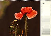 Eine Reise durch den Garten (Wandkalender 2018 DIN A3 quer) - Produktdetailbild 8
