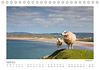 Eine Reise durch Wales (Tischkalender 2018 DIN A5 quer) - Produktdetailbild 4