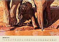 Elefantenkinder. Spielplatz Savanne (Wandkalender 2018 DIN A3 quer) - Produktdetailbild 1