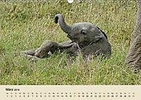 Elefantenkinder. Spielplatz Savanne (Wandkalender 2018 DIN A3 quer) - Produktdetailbild 3
