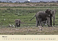 Elefantenkinder. Spielplatz Savanne (Wandkalender 2018 DIN A3 quer) - Produktdetailbild 5
