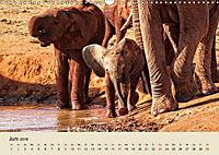 Elefantenkinder. Spielplatz Savanne (Wandkalender 2018 DIN A3 quer) - Produktdetailbild 6