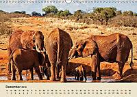 Elefantenkinder. Spielplatz Savanne (Wandkalender 2018 DIN A3 quer) - Produktdetailbild 12