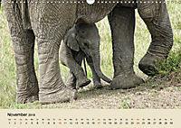 Elefantenkinder. Spielplatz Savanne (Wandkalender 2018 DIN A3 quer) - Produktdetailbild 11