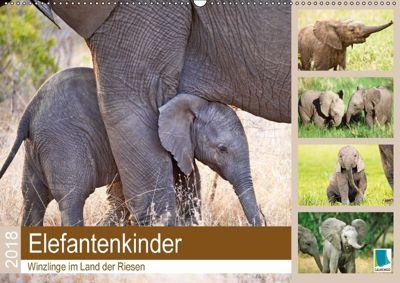 Elefantenkinder: Winzlinge im Land der Riesen (Wandkalender 2018 DIN A2 quer), CALVENDO