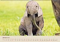 Elefantenkinder: Winzlinge im Land der Riesen (Wandkalender 2018 DIN A2 quer) - Produktdetailbild 1