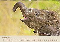 Elefantenkinder: Winzlinge im Land der Riesen (Wandkalender 2018 DIN A2 quer) - Produktdetailbild 2