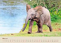 Elefantenkinder: Winzlinge im Land der Riesen (Wandkalender 2018 DIN A2 quer) - Produktdetailbild 5