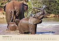 Elefantenkinder: Winzlinge im Land der Riesen (Wandkalender 2018 DIN A2 quer) - Produktdetailbild 9