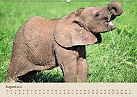 Elefantenkinder: Winzlinge im Land der Riesen (Wandkalender 2018 DIN A2 quer) - Produktdetailbild 8
