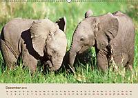 Elefantenkinder: Winzlinge im Land der Riesen (Wandkalender 2018 DIN A2 quer) - Produktdetailbild 12