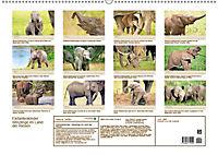 Elefantenkinder: Winzlinge im Land der Riesen (Wandkalender 2018 DIN A2 quer) - Produktdetailbild 13