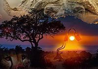 Emotionale Momente: African Dreams (Posterbuch DIN A3 quer) - Produktdetailbild 1