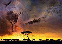 Emotionale Momente: African Dreams (Posterbuch DIN A3 quer) - Produktdetailbild 12