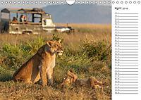 Emotionale Momente: Auf Fotosafari in Kenia (Wandkalender 2018 DIN A4 quer) Dieser erfolgreiche Kalender wurde dieses Ja - Produktdetailbild 4