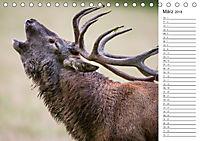 Emotionale Momente: Hirschbrunft. Part III. (Tischkalender 2018 DIN A5 quer) - Produktdetailbild 3