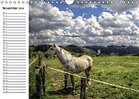 Faszination Eifel (Wandkalender 2018 DIN A4 quer) Dieser erfolgreiche Kalender wurde dieses Jahr mit gleichen Bildern un - Produktdetailbild 11
