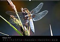 Faszination Gartenteich (Wandkalender 2018 DIN A2 quer) - Produktdetailbild 2