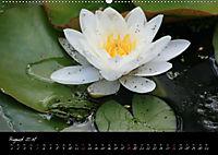 Faszination Gartenteich (Wandkalender 2018 DIN A2 quer) - Produktdetailbild 8