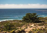 Faszination Pazifikküste (Tischaufsteller DIN A5 quer) - Produktdetailbild 3