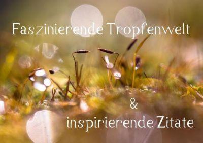 Faszinierende Tropfenwelt & inspirierende Zitate (Tischaufsteller DIN A5 quer), Andrea Potratz