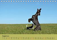 Fellige Feldnasen (Tischkalender 2018 DIN A5 quer) - Produktdetailbild 8