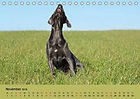 Fellige Feldnasen (Tischkalender 2018 DIN A5 quer) - Produktdetailbild 11
