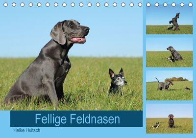Fellige Feldnasen (Tischkalender 2018 DIN A5 quer), Heike Hultsch