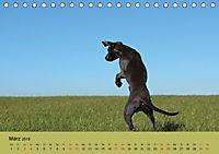 Fellige Feldnasen (Tischkalender 2018 DIN A5 quer) - Produktdetailbild 3