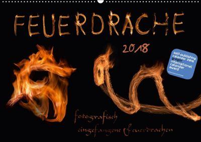 Feuerdrache (Wandkalender 2018 DIN A2 quer), Kamran v.Kleist