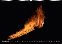 Feuerdrache (Wandkalender 2018 DIN A2 quer) - Produktdetailbild 9