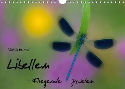 Fliegende Juwelen - Libellen (Wandkalender 2018 DIN A4 quer) Dieser erfolgreiche Kalender wurde dieses Jahr mit gleichen, Ferry BÖHME
