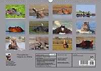 Flusspferde Magie des Augenblicks - Hippos in Afrika (Wandkalender 2018 DIN A3 quer) - Produktdetailbild 13