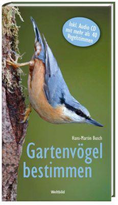 Gartenvögel bestimmen + CD, Hans Martin Busch