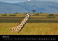 GIRAFFEN - Liebliche Riesen der afrikanischen Savanne (Wandkalender 2018 DIN A2 quer) - Produktdetailbild 1