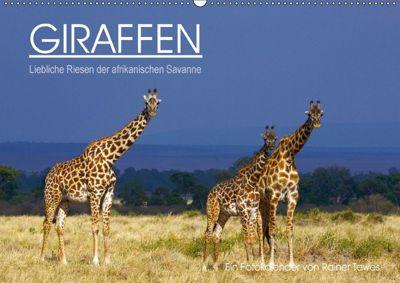 GIRAFFEN - Liebliche Riesen der afrikanischen Savanne (Wandkalender 2018 DIN A2 quer), Rainer Tewes