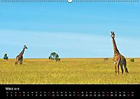 GIRAFFEN - Liebliche Riesen der afrikanischen Savanne (Wandkalender 2018 DIN A2 quer) - Produktdetailbild 3