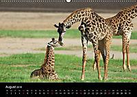 GIRAFFEN - Liebliche Riesen der afrikanischen Savanne (Wandkalender 2018 DIN A2 quer) - Produktdetailbild 8