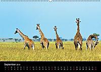 GIRAFFEN - Liebliche Riesen der afrikanischen Savanne (Wandkalender 2018 DIN A2 quer) - Produktdetailbild 9
