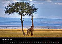 GIRAFFEN - Liebliche Riesen der afrikanischen Savanne (Wandkalender 2018 DIN A2 quer) - Produktdetailbild 12