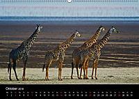 GIRAFFEN - Liebliche Riesen der afrikanischen Savanne (Wandkalender 2018 DIN A2 quer) - Produktdetailbild 10