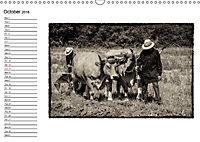 Harvest, pictures from yesteryear (Wall Calendar 2018 DIN A3 Landscape) - Produktdetailbild 10