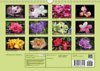 Himmlische Hibisken (Wandkalender 2018 DIN A4 quer) - Produktdetailbild 13