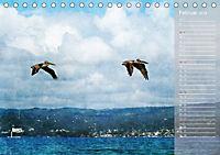 Hispanolas Vogelwelt (Tischkalender 2018 DIN A5 quer) Dieser erfolgreiche Kalender wurde dieses Jahr mit gleichen Bilder - Produktdetailbild 2