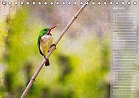 Hispanolas Vogelwelt (Tischkalender 2018 DIN A5 quer) Dieser erfolgreiche Kalender wurde dieses Jahr mit gleichen Bilder - Produktdetailbild 7