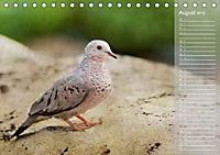 Hispanolas Vogelwelt (Tischkalender 2018 DIN A5 quer) Dieser erfolgreiche Kalender wurde dieses Jahr mit gleichen Bilder - Produktdetailbild 8