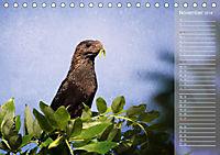 Hispanolas Vogelwelt (Tischkalender 2018 DIN A5 quer) Dieser erfolgreiche Kalender wurde dieses Jahr mit gleichen Bilder - Produktdetailbild 11