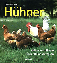 Hühner - Produktdetailbild 1