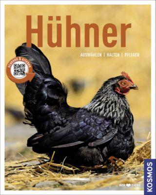 Hühner, Anja Steinkamp